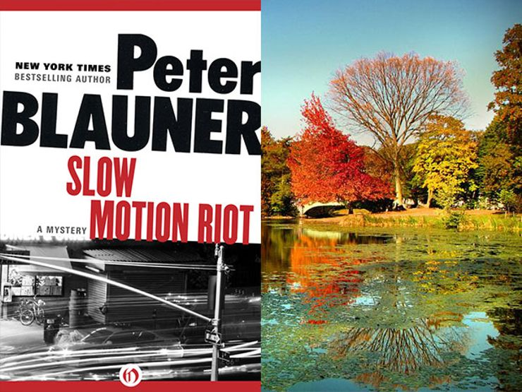slow motion riot by peter blauner
