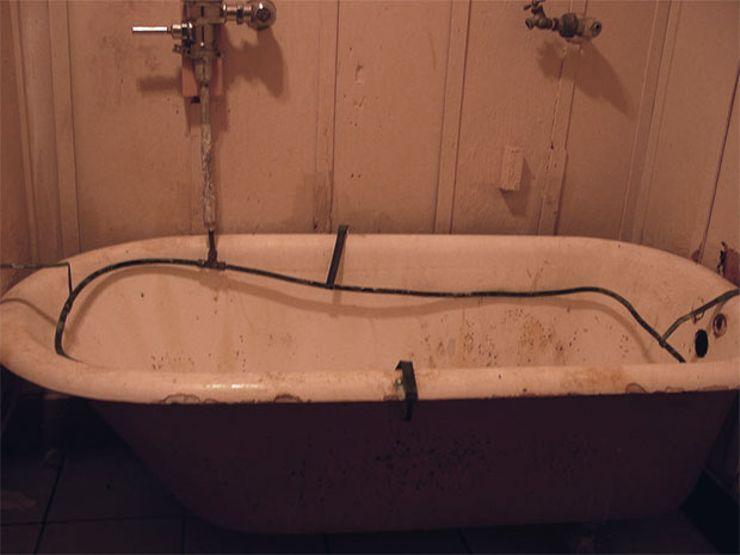 murder bird bathtub