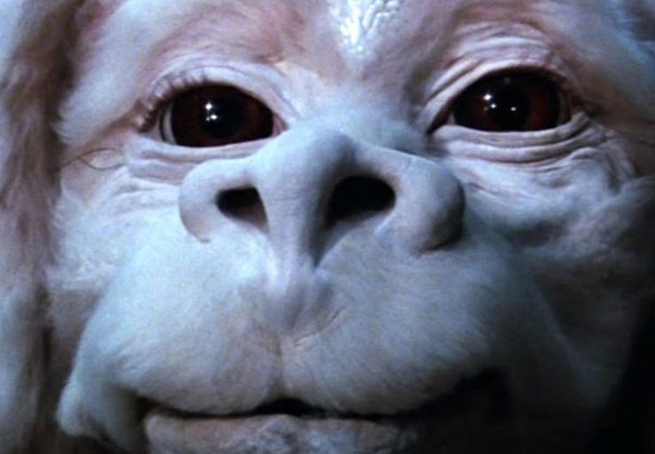 best fantasy characters Falkor The Neverending Story
