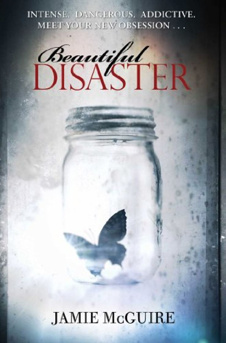 Buy Beautiful Disaster at Amazon