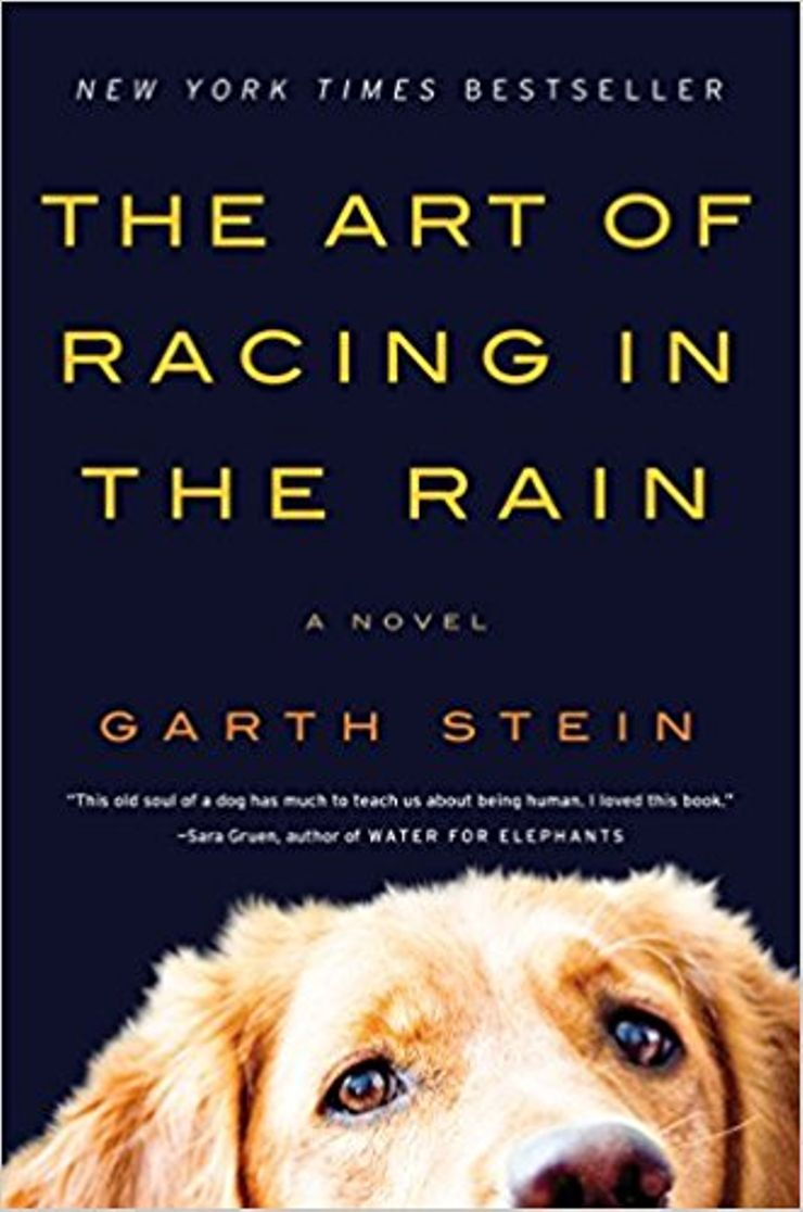 Buy The Art of Racing in the Rain at Amazon