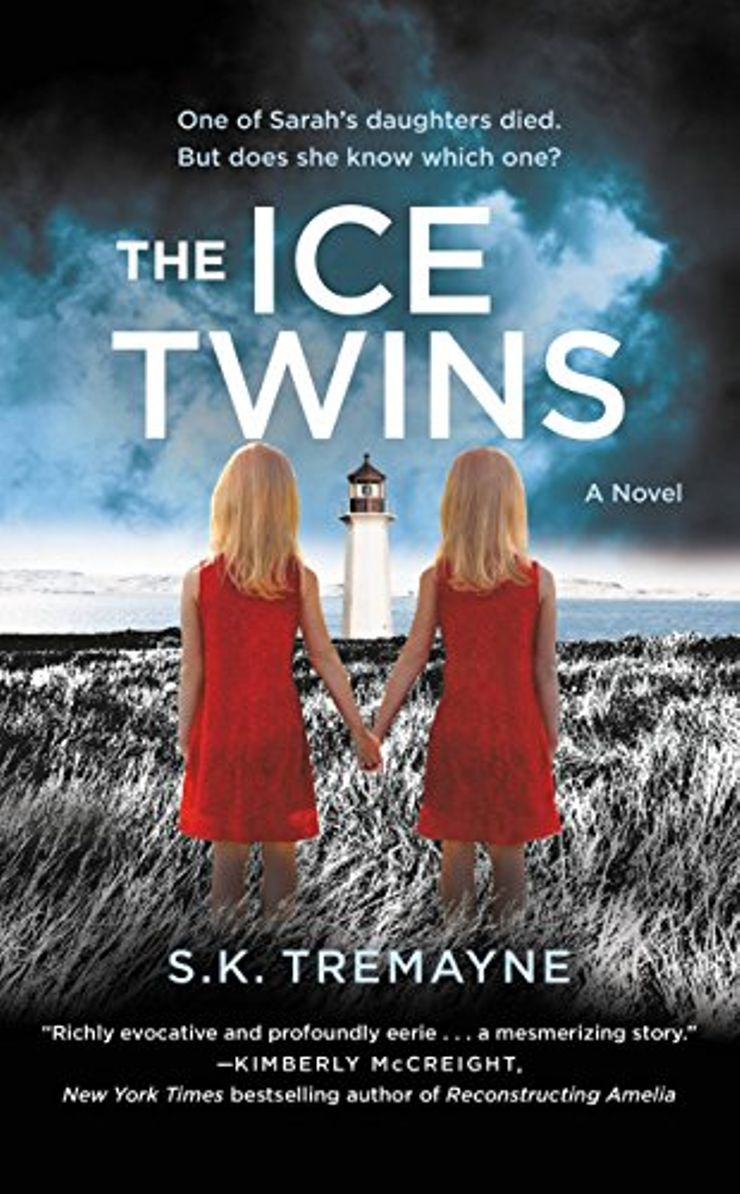 Buy The Ice Twins at Amazon