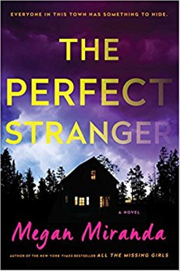 Buy The Perfect Stranger at Amazon