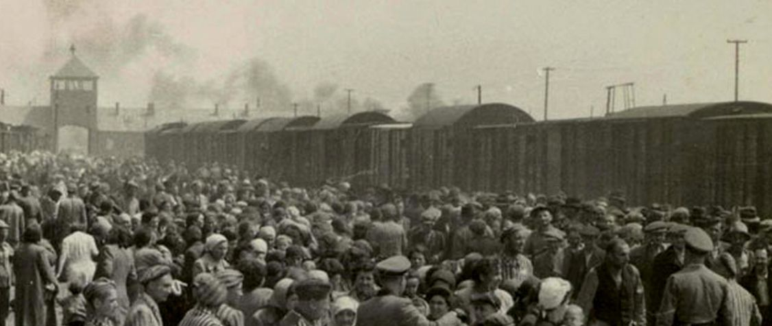 15 Eye-Opening Books About the Holocaust