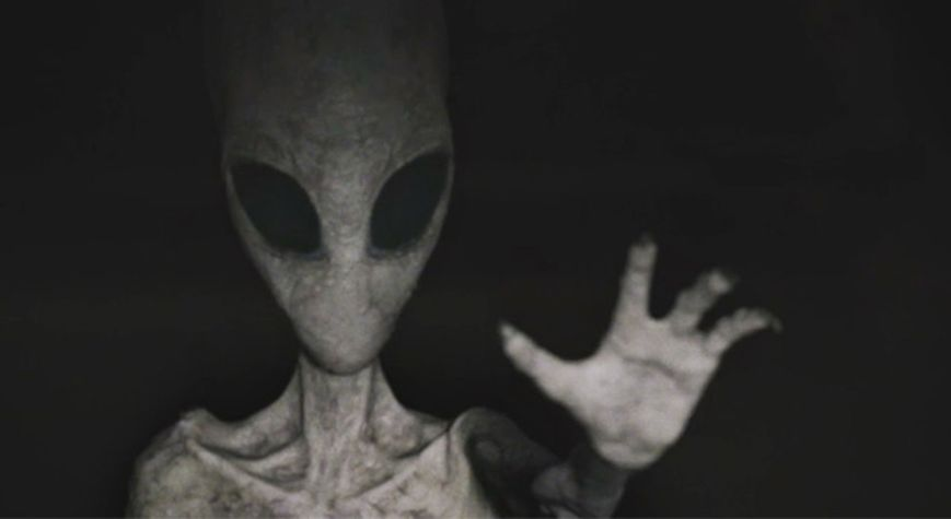 common grey alien