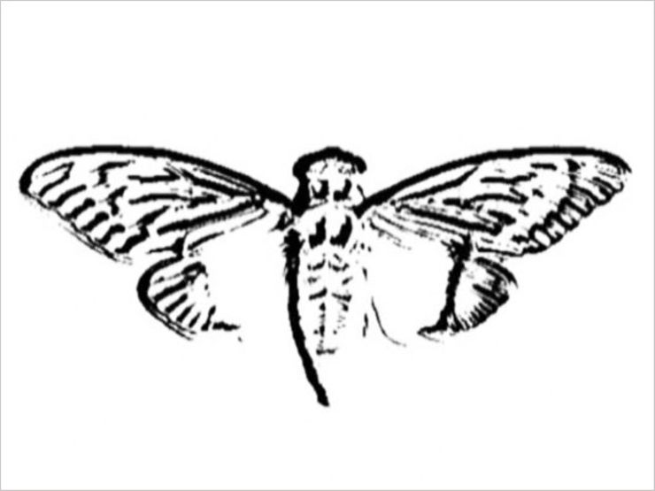 internet mysteries cicada 3301