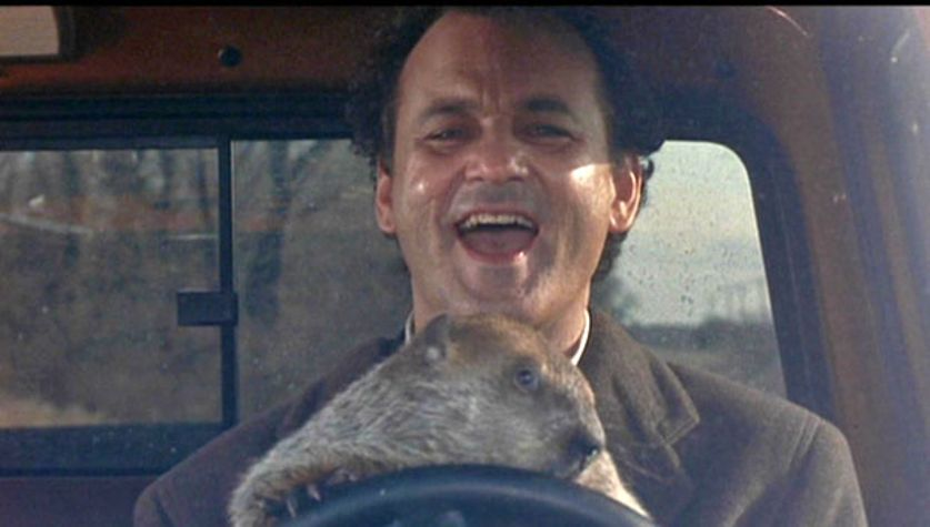 great time travel movies streaming groundhog day bill murray