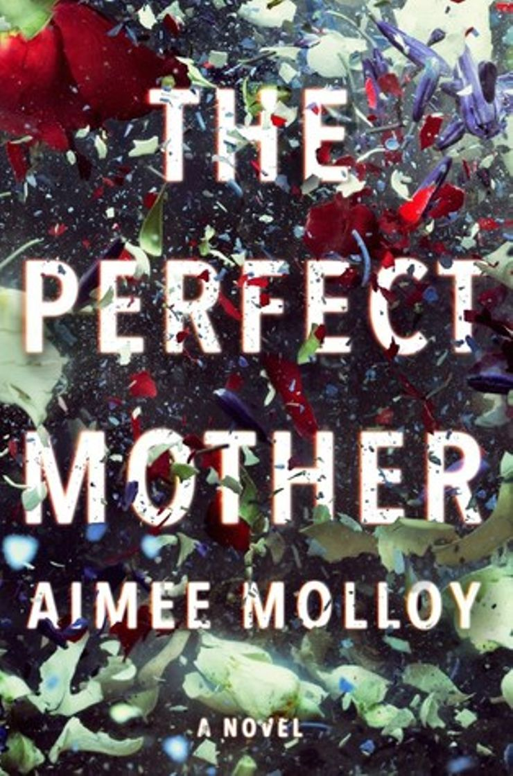 Buy The Perfect Mother at Amazon