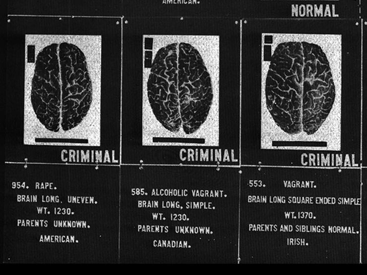 brain dysfunction and criminal behavior The focus of criminal behavior study is to understand offender better and answer questions like: who criminals are, why do they commit an offence, in order to.