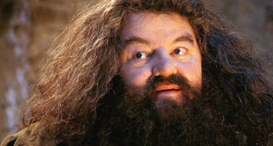 best fantasy characters Hagrid Harry Potter