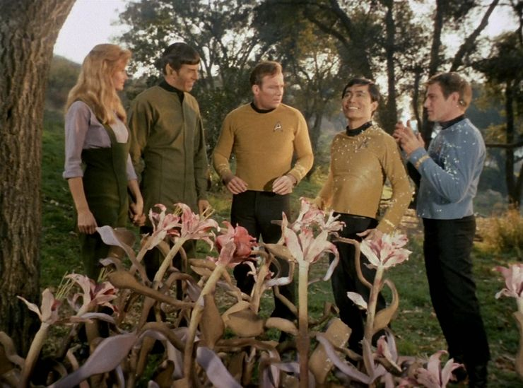 hazards in star trek universe alien plants this side of paradise