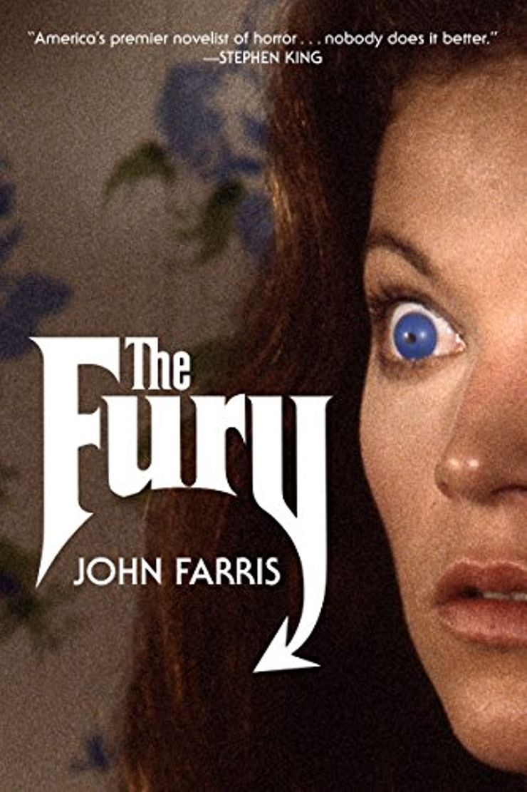 Buy The Fury at Amazon