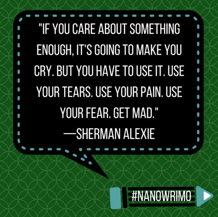 nanowrimo quotes