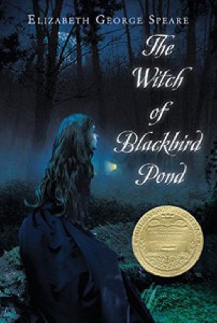Young Adult Novels The Witch of Blackbird Pond