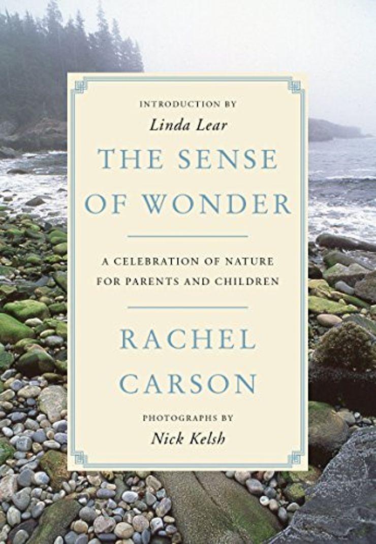 Buy The Sense of Wonder at Amazon