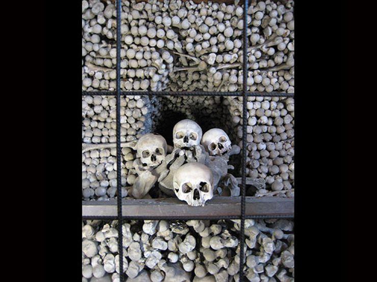11. skullfbehindbars