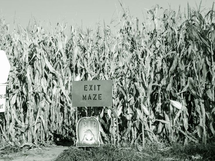 11 Terrifying Haunted Mazes to Visit This Halloween