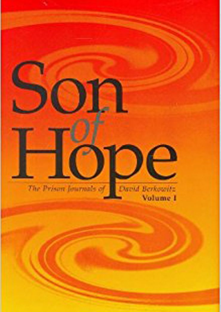 Buy Son of Hope at Amazon