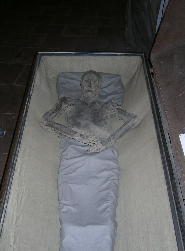mummies basement bremen cathedral