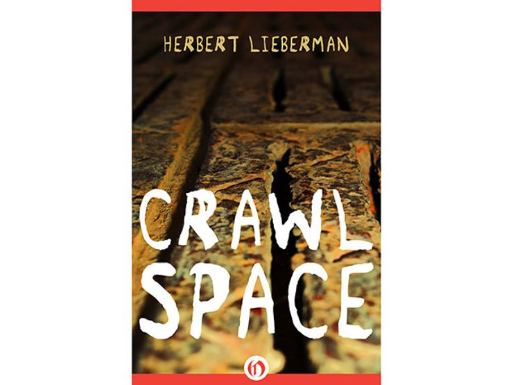 Crawlspace by Herbert Lieberman
