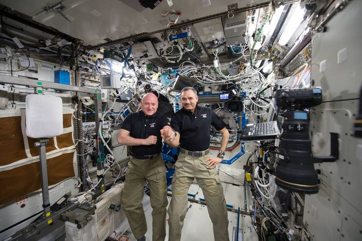 NSA twins study Scott Kelly Mikhail Kornienko Year in Space ISSS