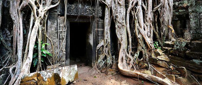 lost civilizations angkor