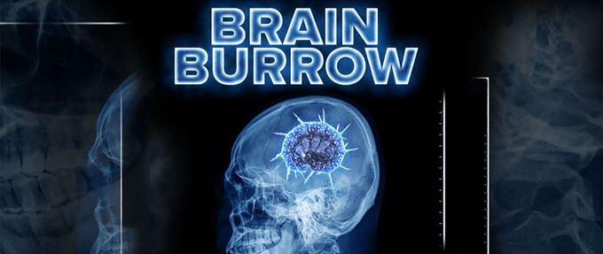 brain burrow