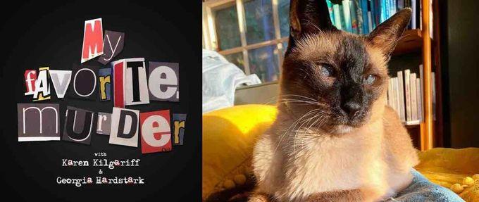 elvis the cat obituary feature