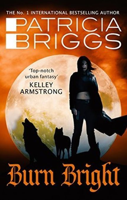 Werewolf Romance Books to Sink Your Teeth Into