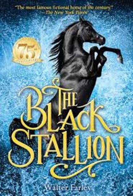 Saddle Up 11 Books About Horses