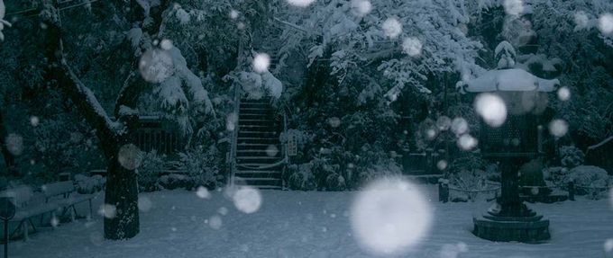 voices in the snow excerpt; snow falls on stairs in the dark