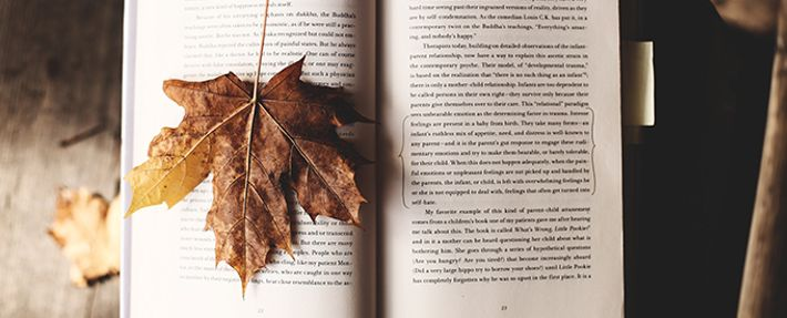 Open book with a fall leaf on it