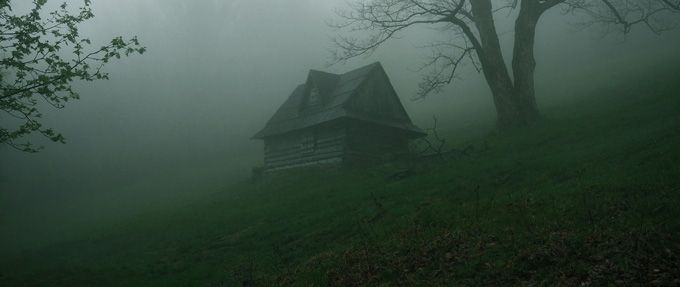 scary books about cabins in the woods