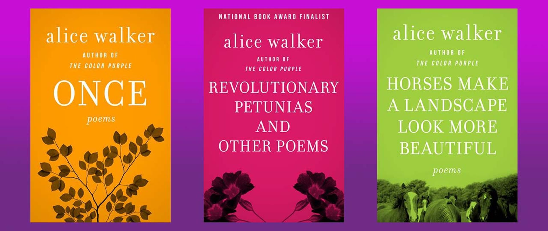 Alice Walker Poems That Everyone Needs To Read